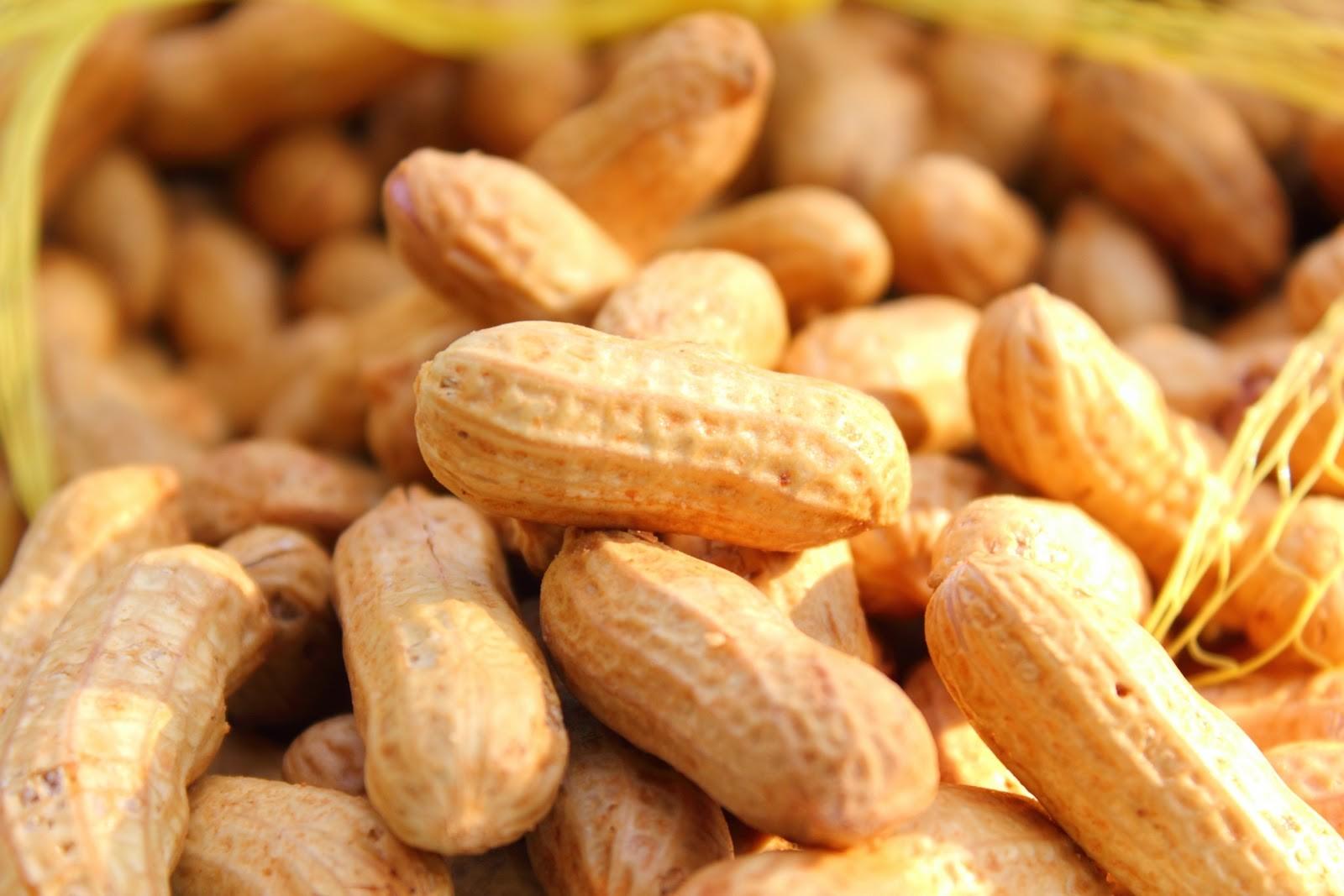 voyage et allergie alimentaire : l'arachide et moi • voyage, partage