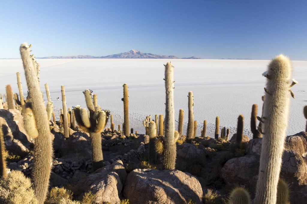 201411 - Bolivie - 0857