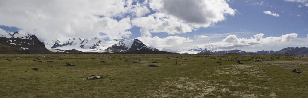 201412 - Antarctique - 0391 - Panorama