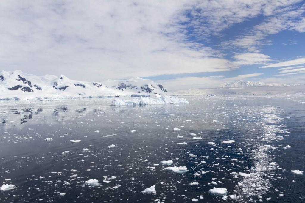 201412 - Antarctique - 1157