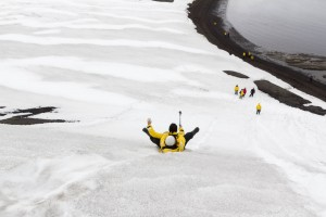 201412 - Antarctique - 1242