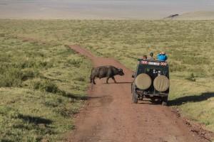 201503 - Tanzanie - 0054