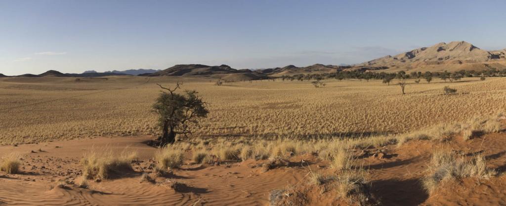 201504 - Namibie - 0486 - Panorama